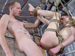 Twunk Crevice Completely Predominated - Aaron Aurora & Sean Taylor